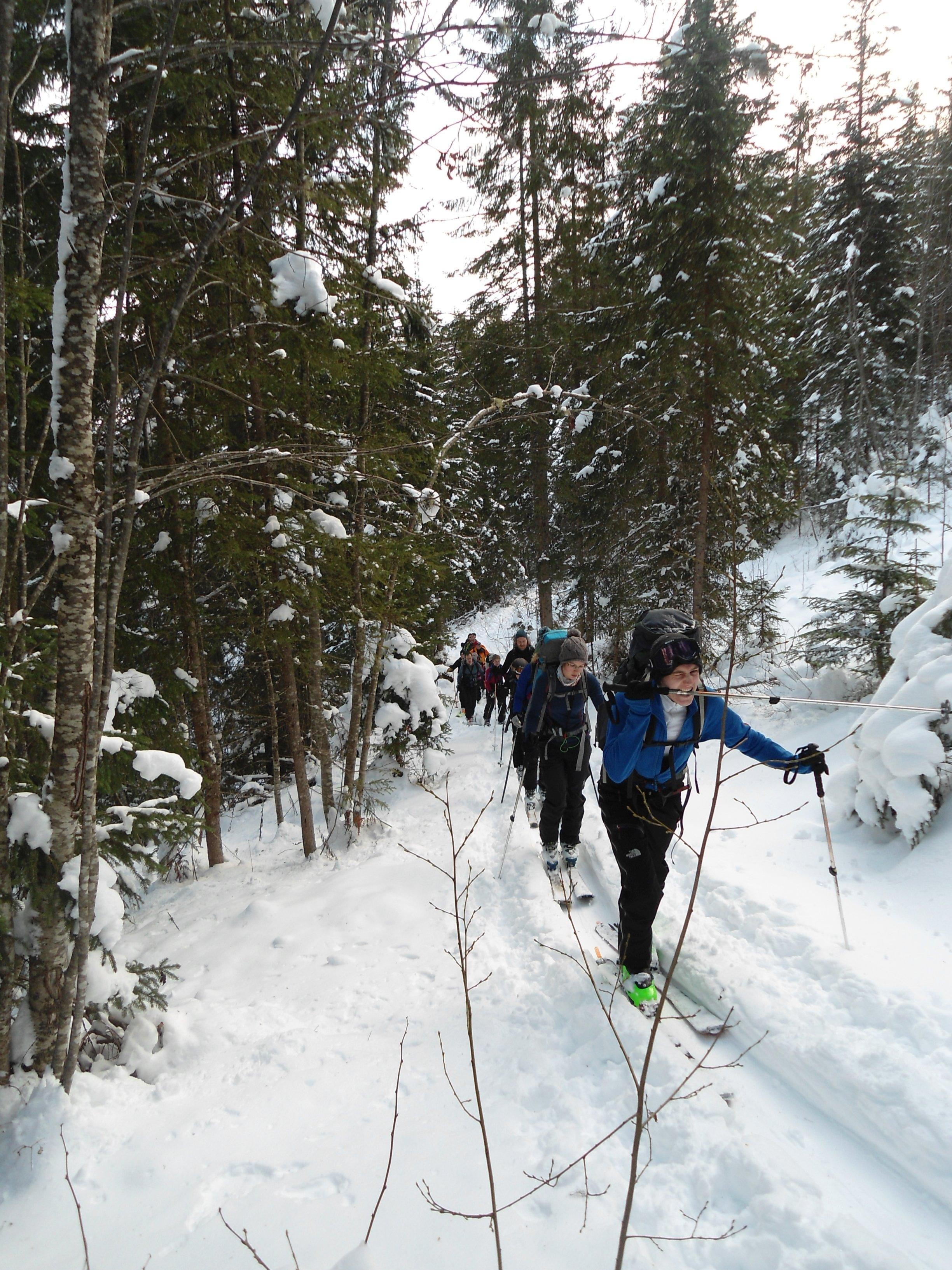 Mit 20 Skitourengängern den Berg hoch... (Foto: Frederick)